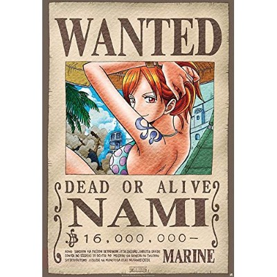One Piece Poster Wanted Nami (68cm x 98cm)