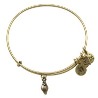 Alex and Ani Charity by Design Zest for Lifeバングルブレスレット