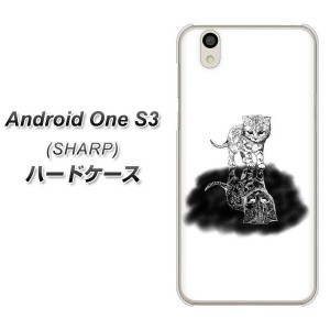 Y!mobile Android one S3 ハードケース カバー 【YJ260 アメリカンショートヘア 猫 素材クリア】