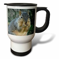 3droseキャッシー・ピーター写真 – Squirrel eating acorns photographed by Angelandspot – 旅行マグ 14oz Travel Mug...