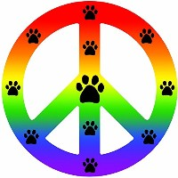 High quality Peace Car Magnet Sign, Rainbow, 41/2-Inch by 4-1/2-Inch