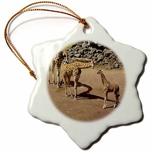 3drose Albomデザイン動物 – Giraffe Family With Baby Giraffe – Ornaments 3 inch Snowflake Porcelain...