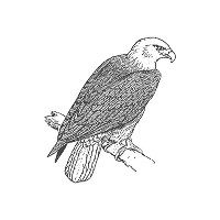 Eagle、pre-inked動物ゴム製スタンプ( # 440123) Stamp size (30x30mm) レッド
