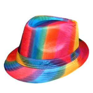 Gay Rainbow Sisters HAT ユニセックス・アダルト US サイズ: One Size Fits Most Adults