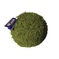 Super Moss 21657 6 in. Green Moss Ball