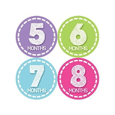 Months in Motion 376 Monthly Baby Girl Stickers Milestone Age Sticker Photo Prop by Months In Motion