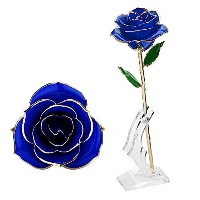 (Blue) - Wefond Long Stem 24K Gold Rose Flower Foil Trim Romantic Rose with Display Stand in Gift...