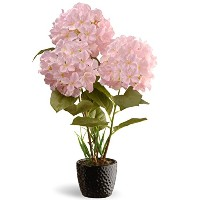 Nationalツリー会社Potted HydrangeaシルクPlant ブラック NF36-5066S