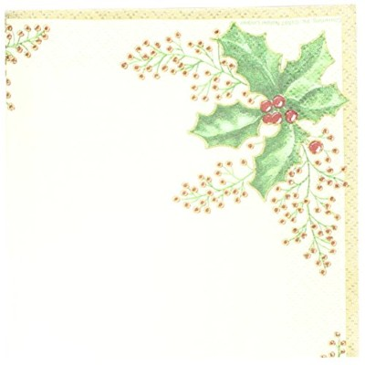 Creative Converting 54568 36 Count Winter Holly用紙Beverage Napkins
