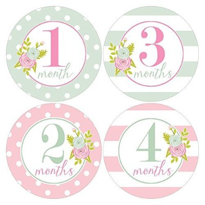 Gift Set of 12 Round Keepsake Photography Monthly Baby Stickers with Pink and Mint Green Roses...