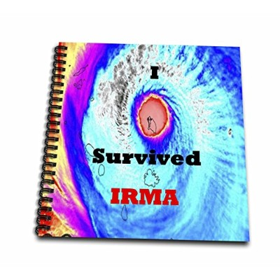 3drose Hurricanes–イメージのスワールカラーハリケーンand I Survived Irma–Drawing Book 8x8 drawing book db_264338_1