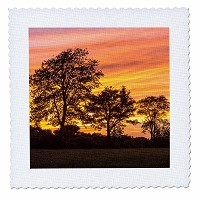 3drose Danita Delimont – Sunsets – Trees at Dusk On Sagamore Hill inハミルトン、マサチューセッツ州。 – キルト正方形 18x18...