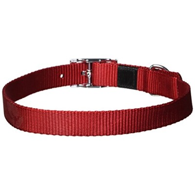 Dogit Nylon Single Ply Dog Collar with Buckle, Large, 22-Inch, Red by Dogit