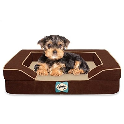 Sealy Dog Bed with Quad Layer Technology, Small, Autumn Brown by Sealy Dog Bed