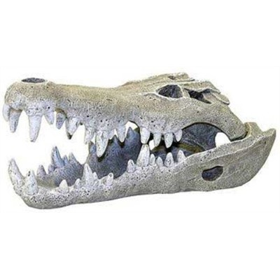 Exotic Environments Nile Crocodile Skull Aquarium Ornament, Large, 6-Inch by 11-1/2-Inch by 5-Inch...