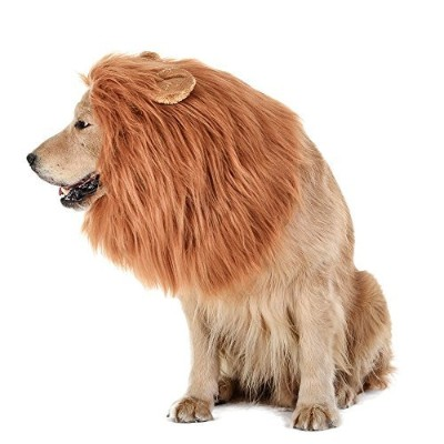 RWM ICCKER Lion Mane for Dog - Halloween Dog Costume Large Size - Hilarious Realistic & Funny...