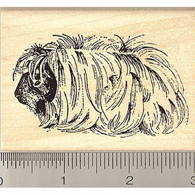 Peruvian Guinea Pig Rubber Stamp, Long Hair