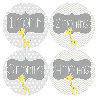Gift Set of 12 Round Keepsake Photography Monthly Baby Stickers with Giraffes in Yellow and Gray...