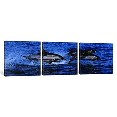 """iCanvasART 3Piece Common Dolphins Breaching in the Sea # 2キャンバスプリントbyパノラマ写真、48"""" x 16"""" / 0.75""""奥行"""