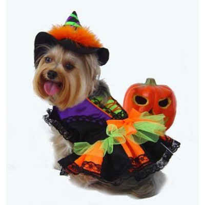 Witch Deluxe Halloween Costume w/Hat For Dogs by Puppe Love