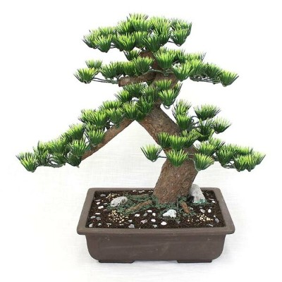 【工芸盆栽】長角 10号 【Bonsai of imitation】【Bonsai of artificial】