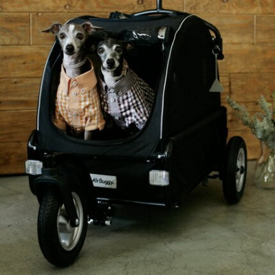 Air Buggy for Dog エアバギー フォードッグ CUBE Twinkle キューブ トゥウィンクル  AirBuggy カート
