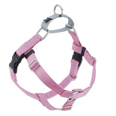 Freedom No-Pull Dog Harness Training Package - 1 XLarge Pink by Wiggles Wags Whiskers