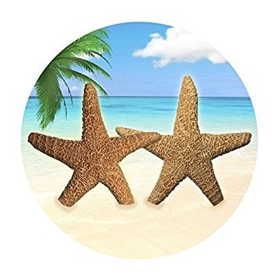 (Star Fish by the Sea) - Screen Door Magnets - That ALWAYS STAY UP using our Exclusive Twist, Click...