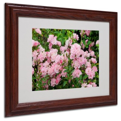 Trademark Fine Art Pink Roses by Kathie McCurdy キャンバスアートワーク 木製フレーム入り 11 by 14-Inch KM0277-W1114MF