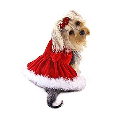 Dog/Puppy Christmas/Holiday/Sundress/Party/Valentine's Day/Festive/Fancy/Formal Velour with Boa...