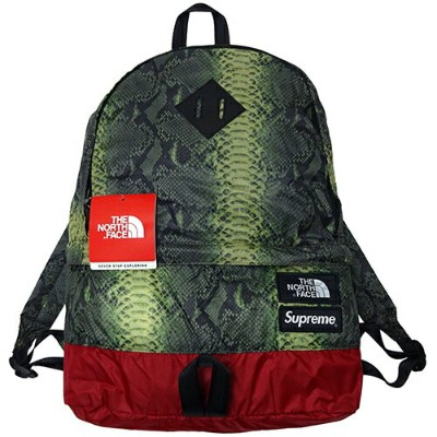 Supreme (シュプリーム) × THE NORTH FACE (ノースフェイス) LIGHT WEIGHT DAY PACK 【NM81834】