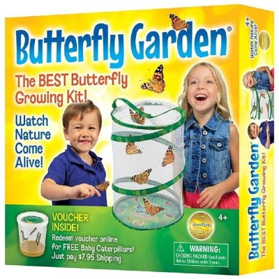 Butterfly Garden バタフライガーデン 対象年齢4歳から