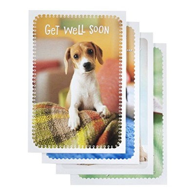 Get Well – Inspirational Boxedカード – Whiskers and Paws