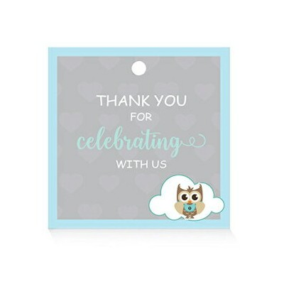 XOXOKristen Baby Shower Favor Tags, Owl Baby Shower Thank You Tags for Gifts 30CT,