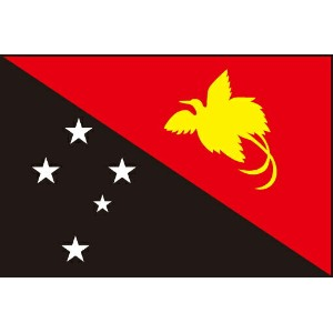 210cm 特大サイズ・アクリル・国旗 パプアニューギニア独立国(Independent State of Papua New Guinea )・National flag【応援グッズ】