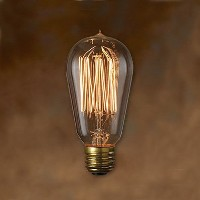 "エジソン バルブ EDISON BULB + BROWN CORD [Signature""S""]"