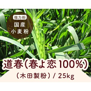TOMIZ cuoca (富澤商店 クオカ) 道春(春よ恋100%)(木田製粉) / 25kg パン用粉(強力粉) 強力小麦粉