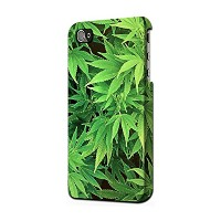 JP1656 マリファナ Marijuana Plant IPHONE 5 5S SE ケース