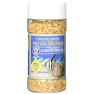 San Francisco Bay Brand ASF71705 Freeze Dried Mysis Shrimp for Fresh and Saltwater Fish, 13gm by San Francisco Bay