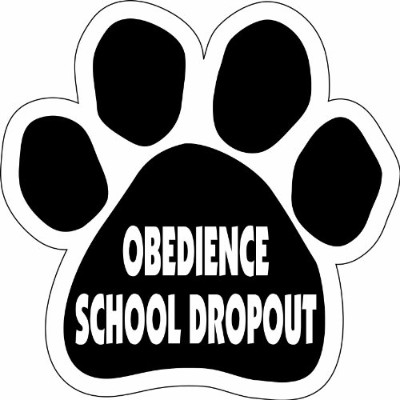 Imagine This Paw Car Magnet, Obedience School Dropout, 5-1/2-Inch by 5-1/2-Inch by Imagine This