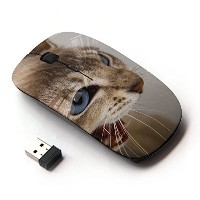 KOOLmouse [ ワイヤレスマウス 2.4Ghz 無線光学式マウス ] [ Cat Blue Eyes Brown White Angry Teeth ]