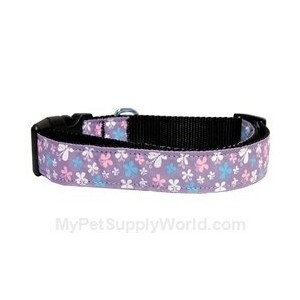 Mirage Pet Products 125-005 XSLV Butterfly Nylon Ribbon Collar Lavender XS