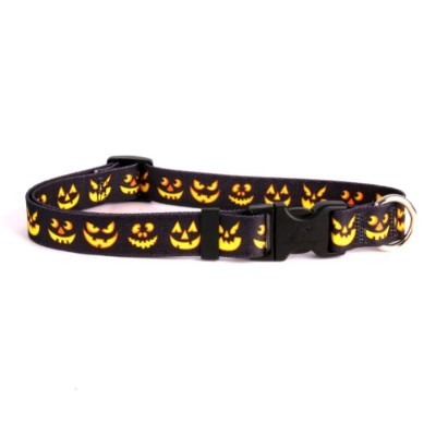 Jack O'Lantern Dog Collar - Size Medium 14 to 20 Long - Made In The USA by Yellow Dog Design
