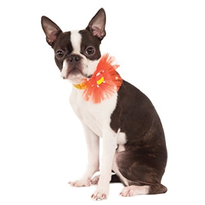 Rubies Costume Company Candy Corn Sequin Pet Necklace Collar, Medium/Large by Rubie's Costume Co