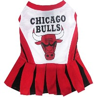 Chicago Bulls Dog Cheer Leading Small
