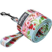 Blueberry Pet 1-inch by 4-Feet the Ultimate Macaroon Cake Nylon Dog Leash With Spring Pastel Hues,...