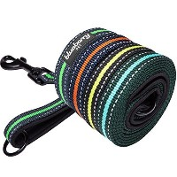 """Blueberry Pet Leashes For Dog 1"""" by 4-Feet Long Misty Blue Stripe Dog Leash with Neoprene Padded..."""
