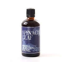 Spinach Leaf Absolute Oil Dilution - 100ml - 3% Jojoba Blend
