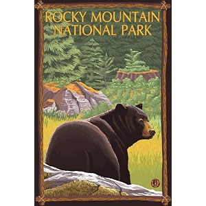 Bear in Forest–ロッキーマウンテン国立公園 16 x 24 Giclee Print LANT-20404-16x24