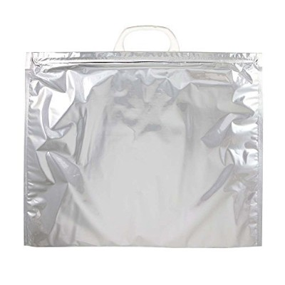 (10) - Pack of 10 Insulated Blank Thermal Bag Large/Keep Items Hot or Cold and Frozen for Hours At...